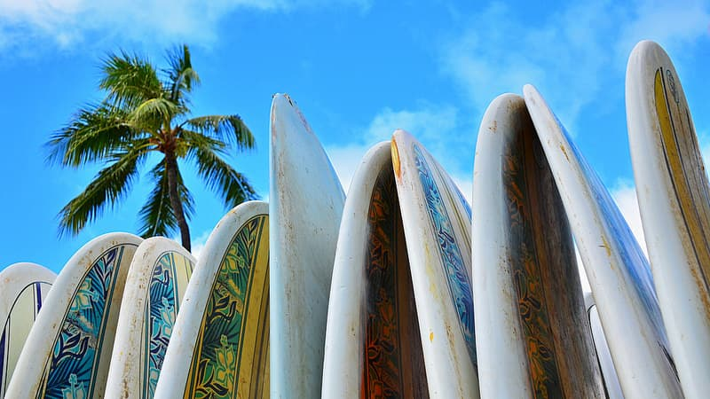 parent's guide to summer surfing camp