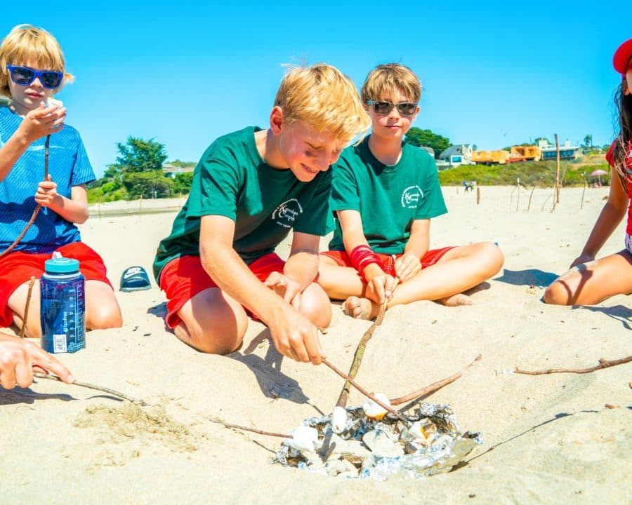 Campers roast marshmallows over beach campfire