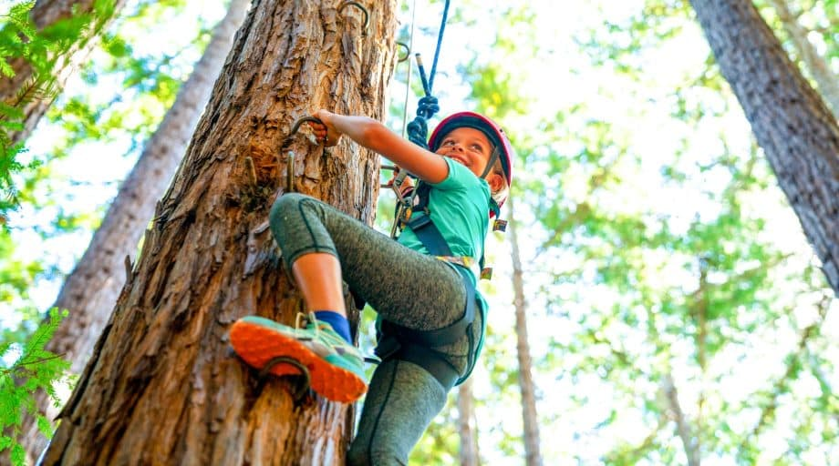 Girl climbs tree at summer camp