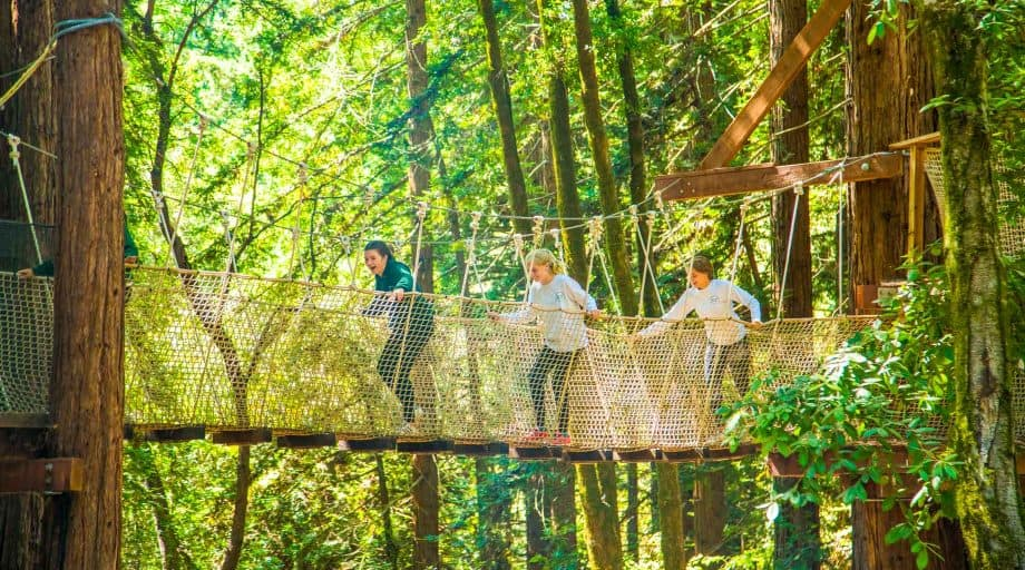 Campers walk across rope bridge on adventure course