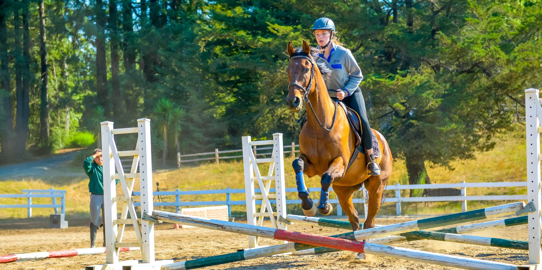 Girl jumps horse at summer camp