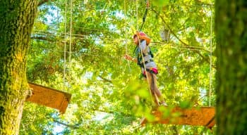 A girl walking on a plank in a ropes course
