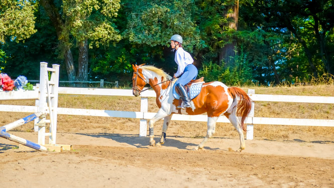 Girl trots horse around summer camp ring