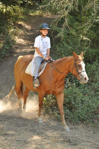 Trail Riding at Kennolyn's Day Camp