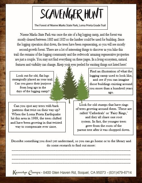 To bring a little bit of summer camp home with you, try a Scavenger Hunt in Nisene Marks State Park.