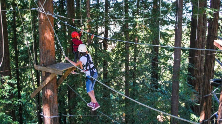 Day campers on high ropes course